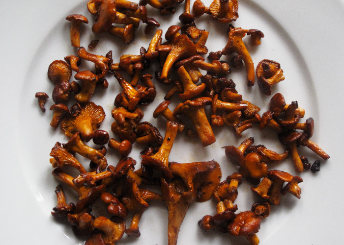 the Swedish Chef: Chanterelles