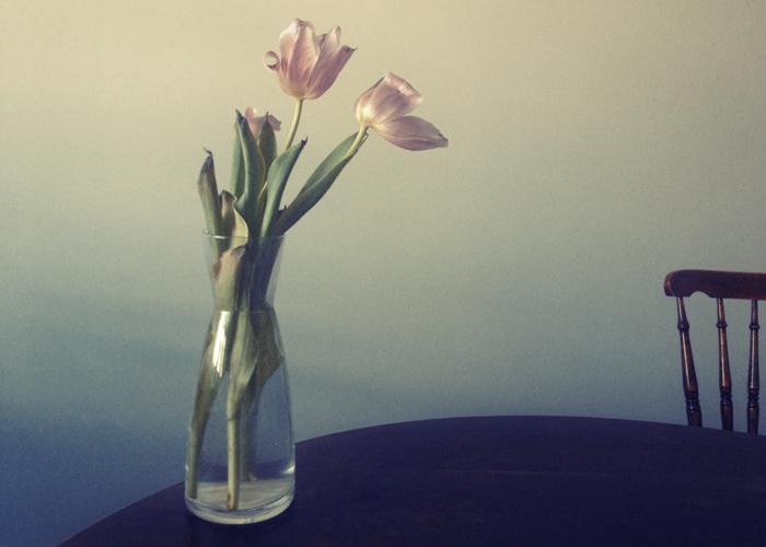 FLOWER_01