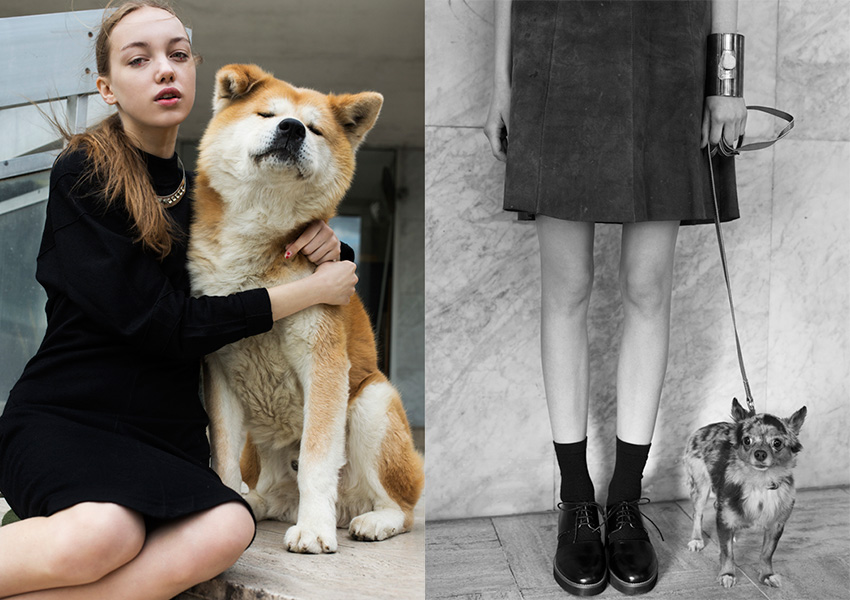 fashion-dogs_02