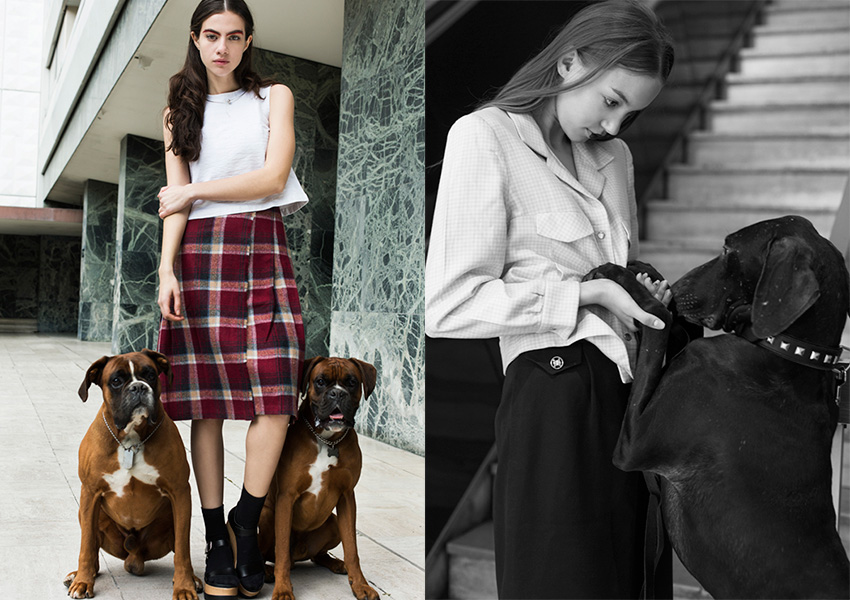 fashion-dogs_03