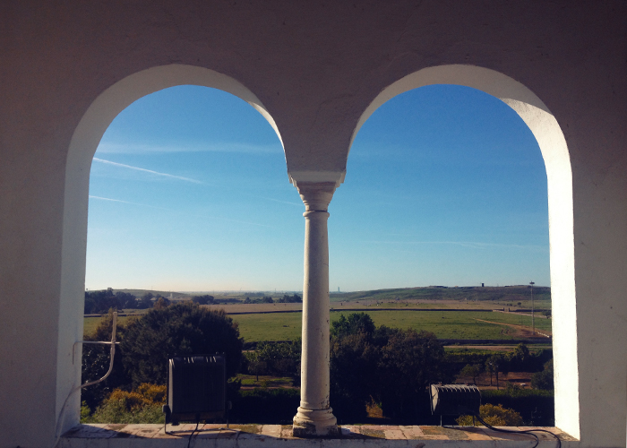 Exploring the roads and fincas around the area they call Andalucia, Spain